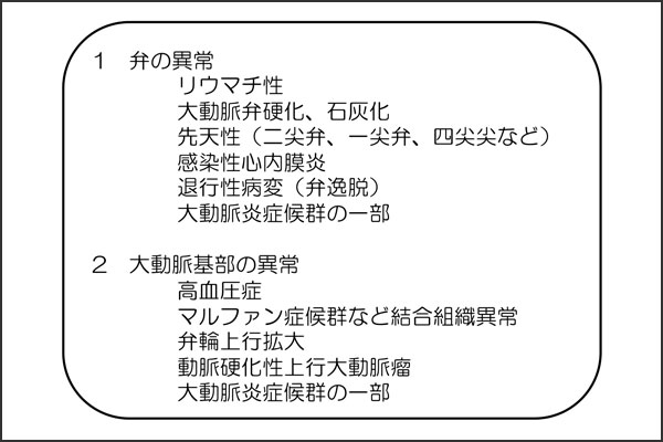 27_aorticregurgitation_01